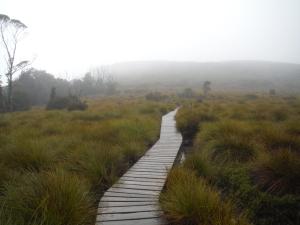 Overland Track 136