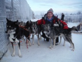 Dog sledding, Abisko National Park, Northern Sweden