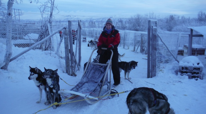 Living the Arctic Life! Cross Country Skiing, Dog Sledding and Learning About The Sami