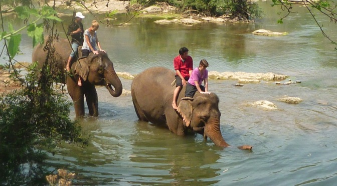 Elephant Riding and Bathing in Luang Prabang