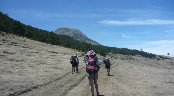The Backpackers Big 4