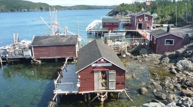 Canada By Car: Leg 3 – Newfie Newfoundland Part 1