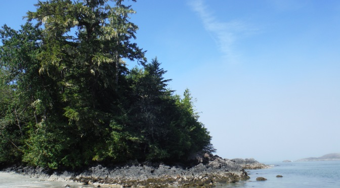 Canada By Bus: Leg 9 – Vancouver Island And The End Of The Road