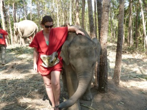 elephant sanctuary 090