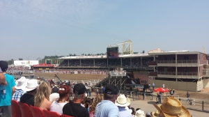 The rodeo in the main Grandstand.